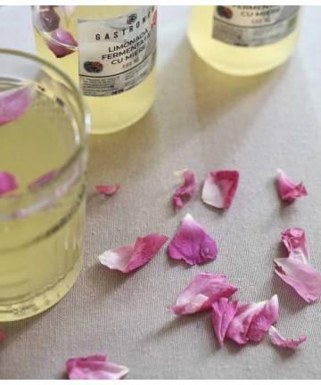 Лимонад ферментированный